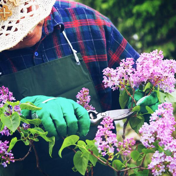 manteniment-jardi-viver-del-rec